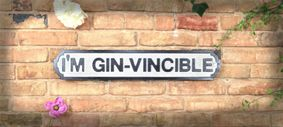 Wooden sign: I am Gin-vincable.